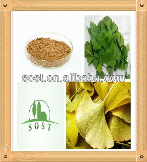 organic herbal extract extracts of ginkgo biloba