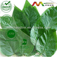 Diabetes/Weight Loss Care Mulberry Leaf Extract
