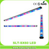 waterproof led grow light fixture 60cm led light bar 39watts made in china