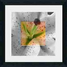 Orange lily crystal modern crystal picture