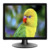 Square A+ screen 19 inch 4:3 tft lcd monitor with VGA DVI HD input