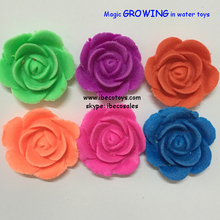 Mini Toy Flower Growing in Water Toys