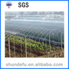Suitable Temperature Agricultural Multi Span Greenhouse