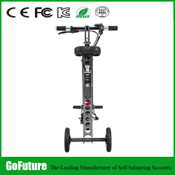 Golden Motor 3 wheel motorized bike,electric cargo trike, three electric cargo tricycle with our Smart Pie Hub Motor