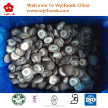 2017 new crop high quality IQF frozen shiitake mushroom