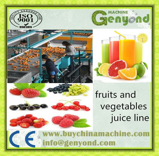 Fruit & Vegetable juice Processing Line