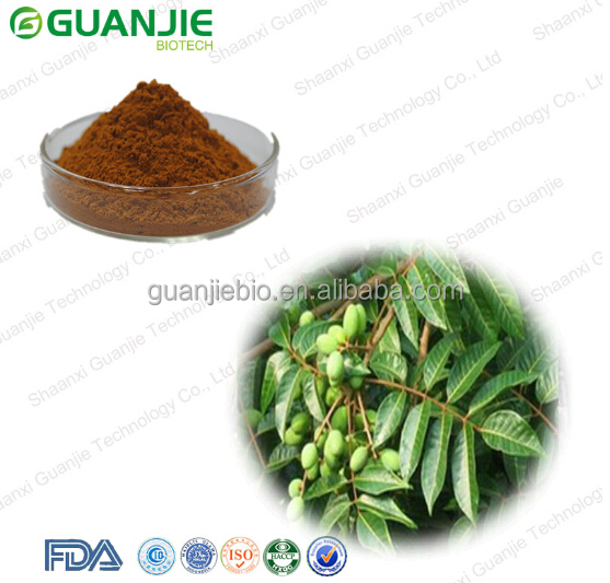 High quality Olive Leaf Extract with free sample