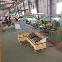 galvanized steel slit coil/ slit strip coil