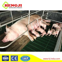 Pig farm equipment PVC farrowing stall pig cage with ductile iron floor