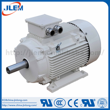Best Sales Guaranteed Quality Electric Motor 0.7Kw