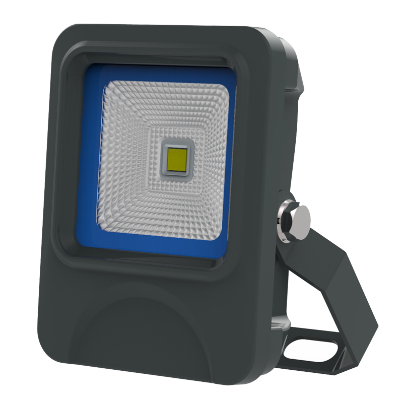 10W IP66 bridge-lux COB LED flood light