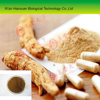Chinese supply Angelica/Dong quai Extract powder for sale
