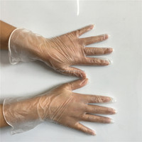 Powder free and powdered disposable examination/exam vinyl gloves