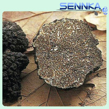 High quality elvan truffle wild dried black truffle