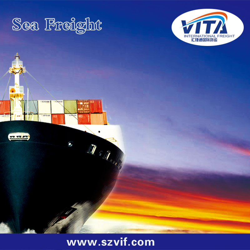 top sea shipping forwarder to bata from shenzhen