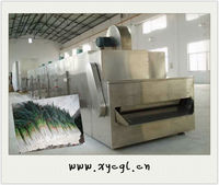 Convey Belt Dryers For Welsh Onion / Chinese Onion