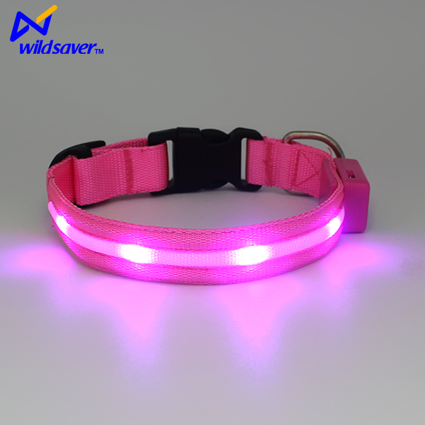 Newest Design Led Pet Dog with Collar in Nylon Material