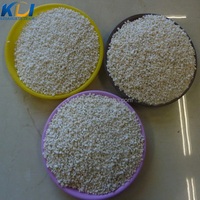 HORTICULTURAL PERLITE THE NATURAL GROWING MEDIA FOR OUTDOOR GARDENING