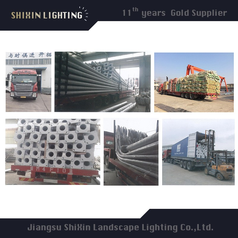 china 5m 6m 8m 9m LED decorative street lighting pole price