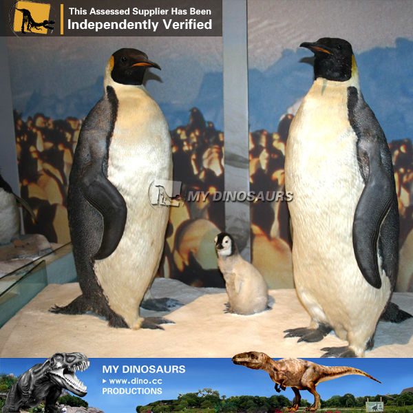 MY Dino-Anatomical models of water penguin applicator animal