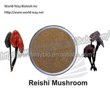 Free sample ! hot sell sex products red reishi extract /lingzhi mushroom extract/ganoderma lucidum extract polysaccharides