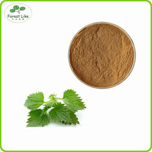 Natural organic Nettle Leaf Extract powder