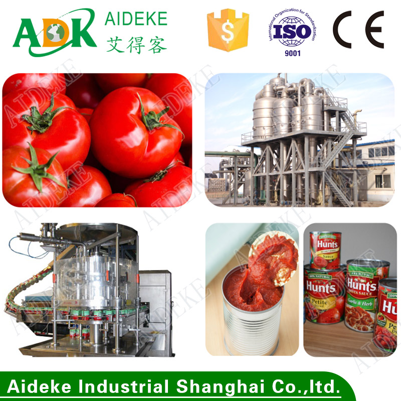 Tomato paste production lines for final products in cans