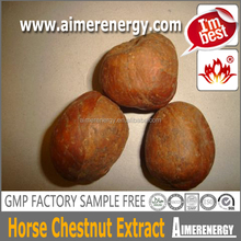 High Purity horse chest nut p.e. powder