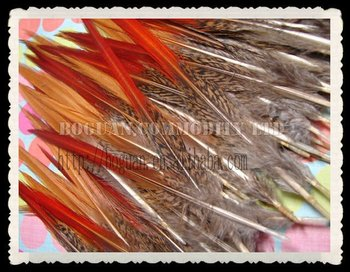 natural dyed rooster tail feathers for hair wholesale