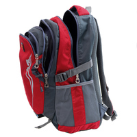 New products Basic model campus sport backpack for young