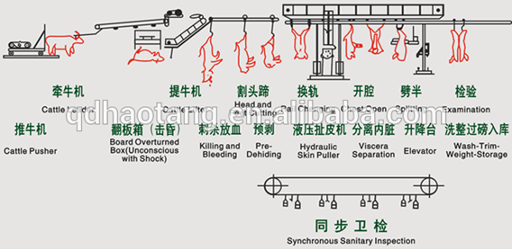 Highly customized professional slaughtering machinery and equipment