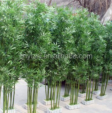 Yzp000076 pianta di bamb artificiali ingrosso albero for Pianta bambu prezzo