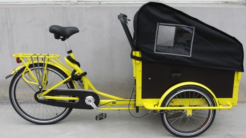 adult tricycle 2 wheel/ 3 wheel cargo bike manufacturer colorful box bike e bikes