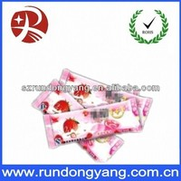 High quality lowest price ice popsicle bag