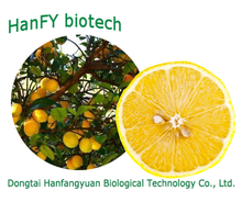 High purity lemon concentrate professional production excellent quality