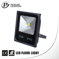 Outdoor Parks Flower Bed Lighting 50w