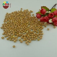 Wholesale Export High Quality Chickpea To