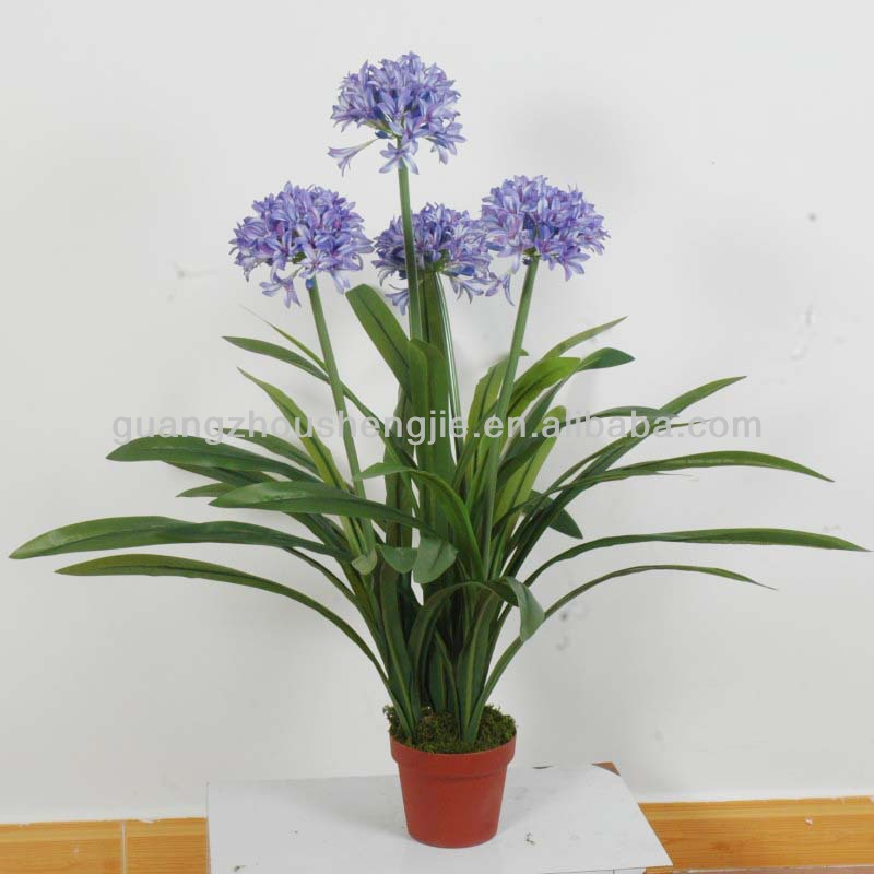 artificial Daffodils/Water Hyacinth/Narcissus Hybrida plants with purple flower