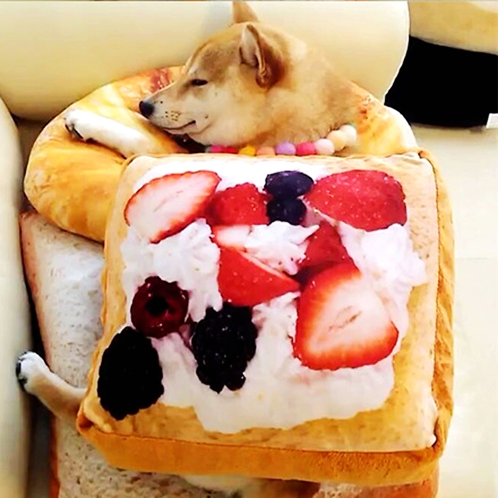 custom wholesale plush soft stuffed bread shape fruit printed pet dog sleep cushion pad with croissant pillow