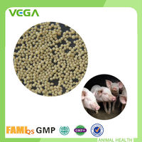 Certificated Bacillus Licheniformis Animal Feed Probiotic For Fattening Pigs Growth