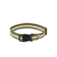 Petstar Widely Used Superior Quality Pet Products Cheap Dog Collar