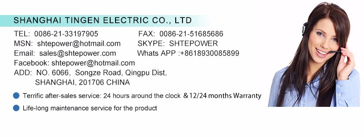 1500w on grid tie wind inverter 3phase ac 45-90v input to ac 190-260v output (TEG-1500W-WAL-LCD)