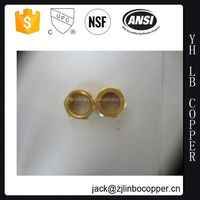OEM customized plastic brass copper pipe plug