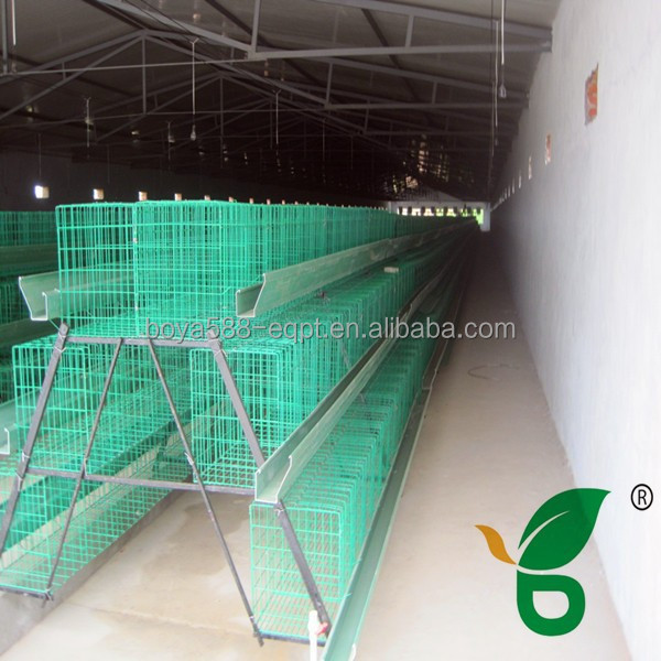 Plastic coated metal chicken house with feeding machine for at least 15 years lifespan