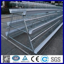 automatic chicken layer cage for sale in philippines/chicken cage system