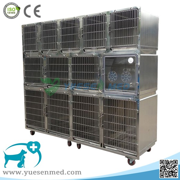 YSVET0510 animal hospital combination cat dog cages for sale