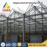 Advanced Intelligent Commercial Greenhouse For Sale