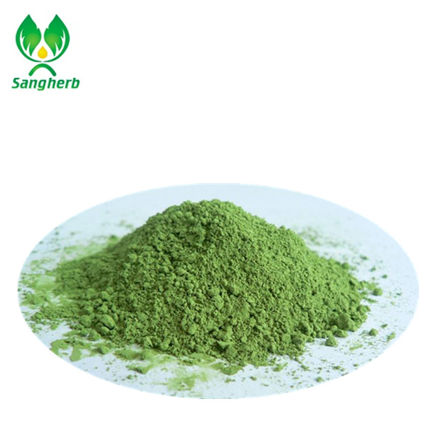 High quality wheat grass / Barley grass extract juice powder
