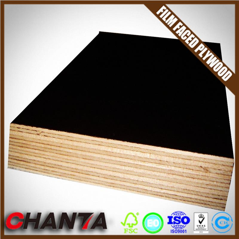 poplar/combi/hardwood plywood sheets marine ply floor for container