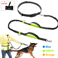 Hot sold Dog nylon Hands Free Running Dog Leash